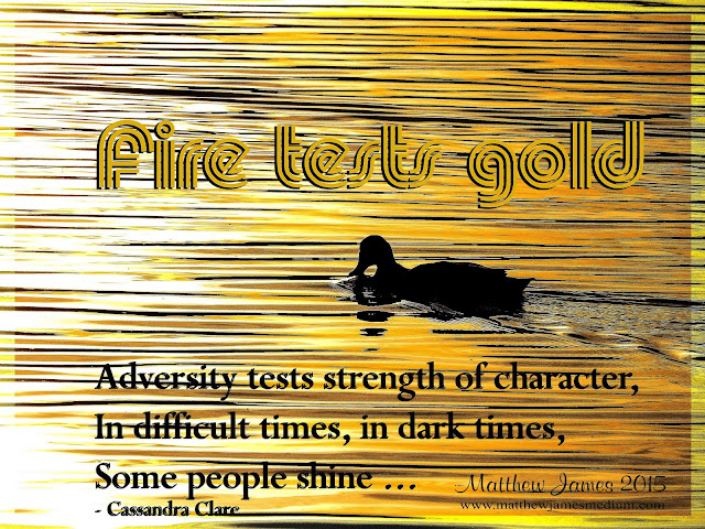 """Adversity tests strength of character. In difficult times, in dark times, some people shines"" - Cassandra Clare"