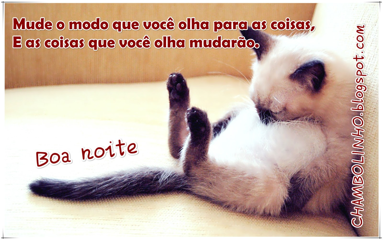Imagens Para Whatsapp: Frases De Boa Noite Para O Whatsapp