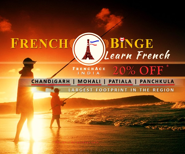 mohali.frenchace.com