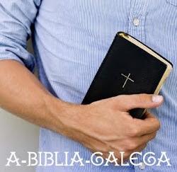 https://www.abibliagalega.com/