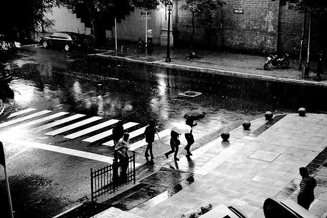 Gente con paraguas bajo la lluvia en Blanco y negro
