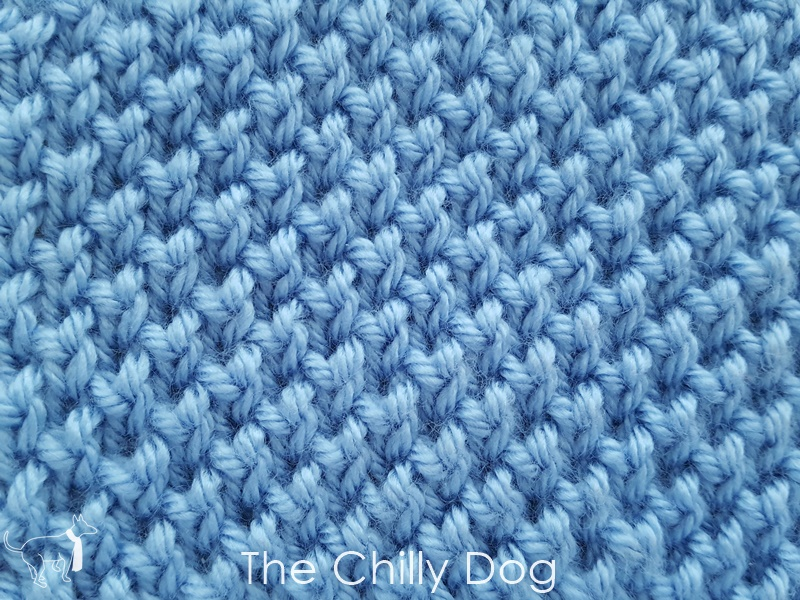 Stitch Of The Month Twisted Seed Stitch The Chilly Dog