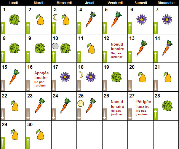 Calendrier Lunaire Fevrier.Calendrier Lunaire Fevrier 2014 Calendario De Los Cowboys