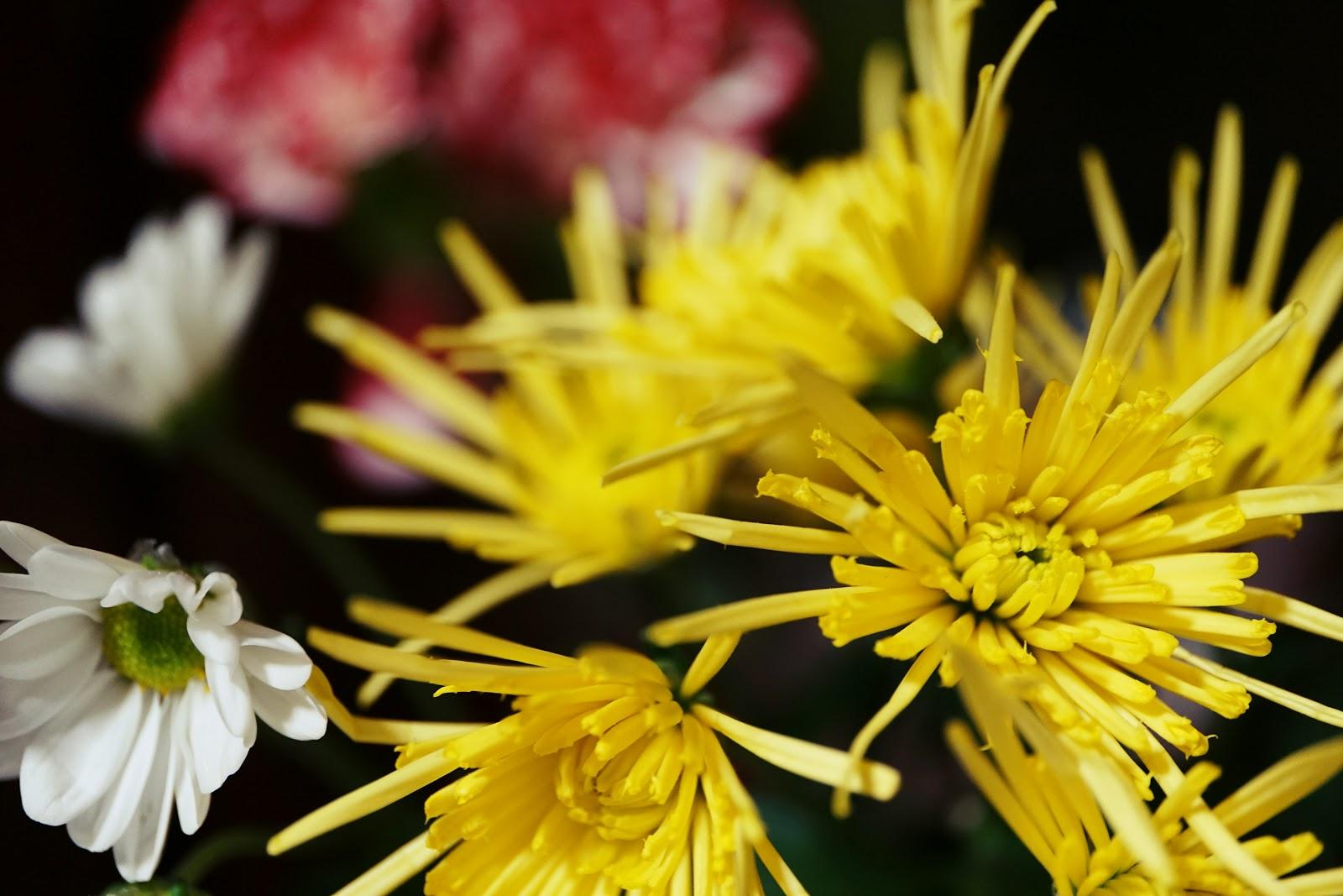 花瓶の細い花弁が開いた幾つかの黄色い花