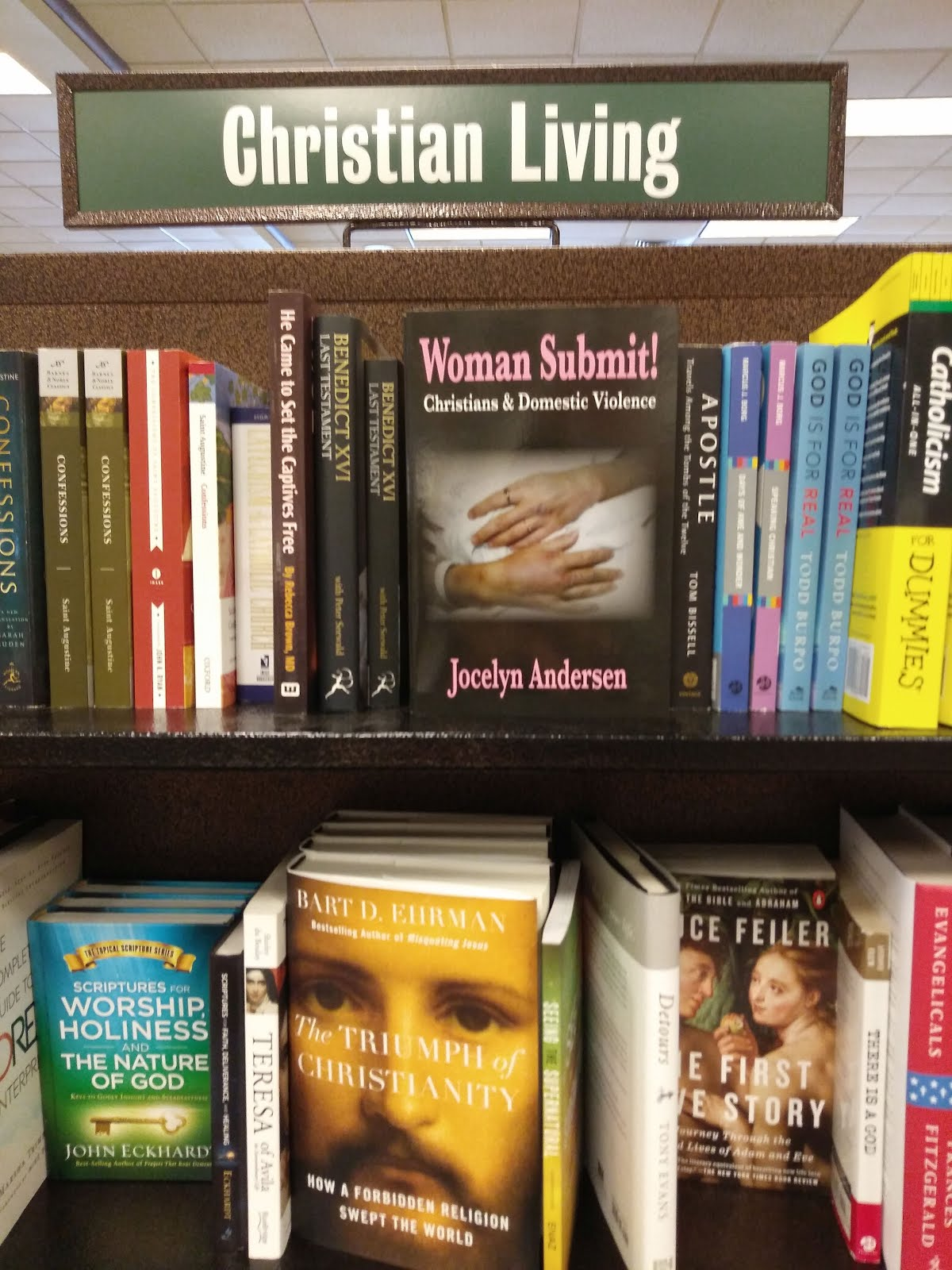 Click image below to buy Jocelyn's Books from Barnes and Noble