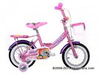 Sepeda Anak UNITED KOKURI