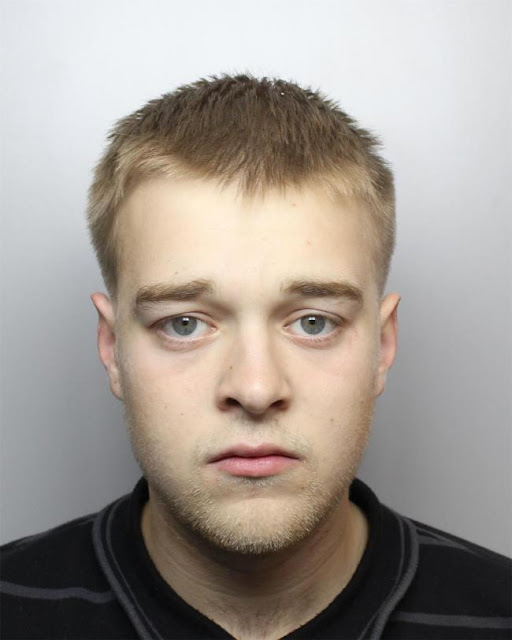 Banned driver Marley Kent, 23, reached 75mph, rammed police car and almost hit pedestrian during chase