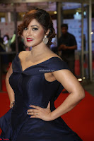 Payal Ghosh aka Harika in Dark Blue Deep Neck Sleeveless Gown at 64th Jio Filmfare Awards South 2017 ~  Exclusive 122.JPG