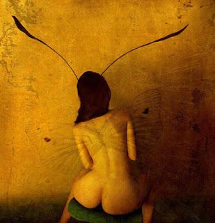 Fotografía al desnudo con mariposa
