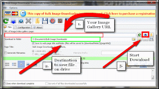 How To Download All Images From a Web Page Free HD