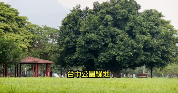 台中公園綠地景點|戶外踏青|休閒運動|親子景點|持續更新