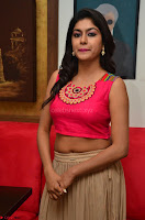 Akshita super cute Pink Choli at south indian thalis and filmy breakfast in Filmy Junction inaguration by Gopichand ~  Exclusive 077.JPG