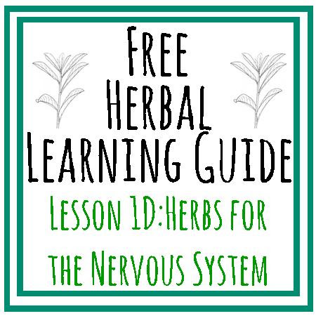 {Herbal Learning Guide} Lesson 1D: Materia Medica - Herbs for the Nervous System