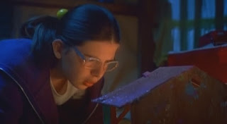 welcome to the dollhouse heather matarazzo