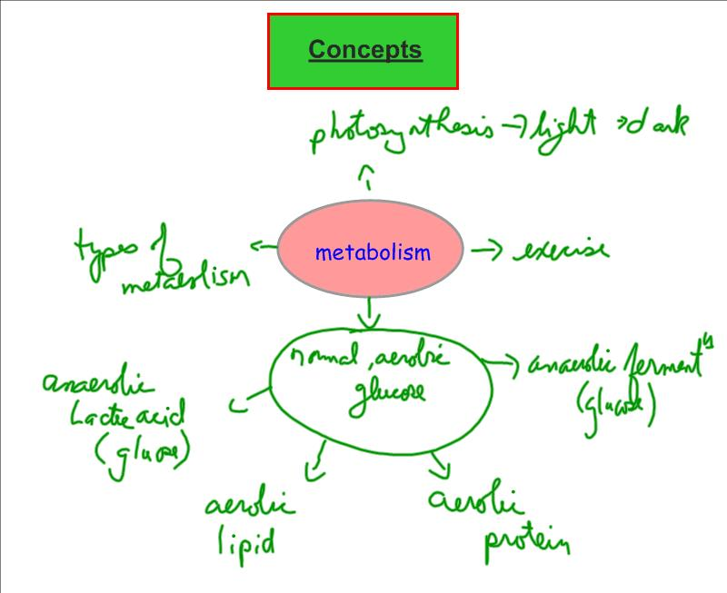 Grade 12 University Biology