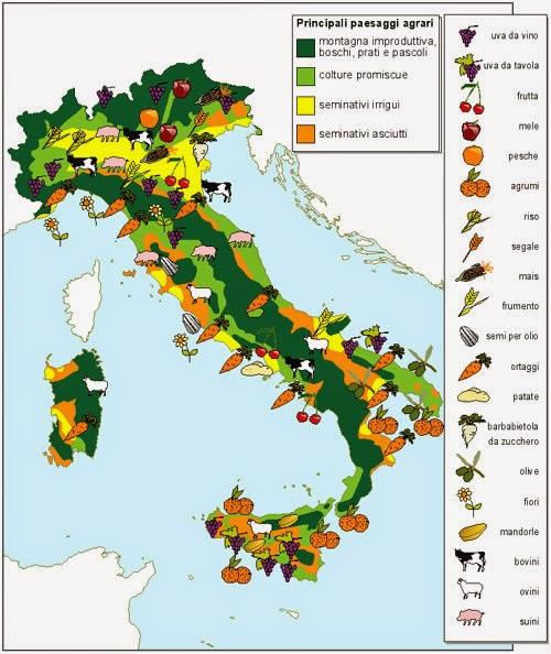Ripasso facile riassunto sull 39 economia italiana for Da dove proviene il grano della barilla