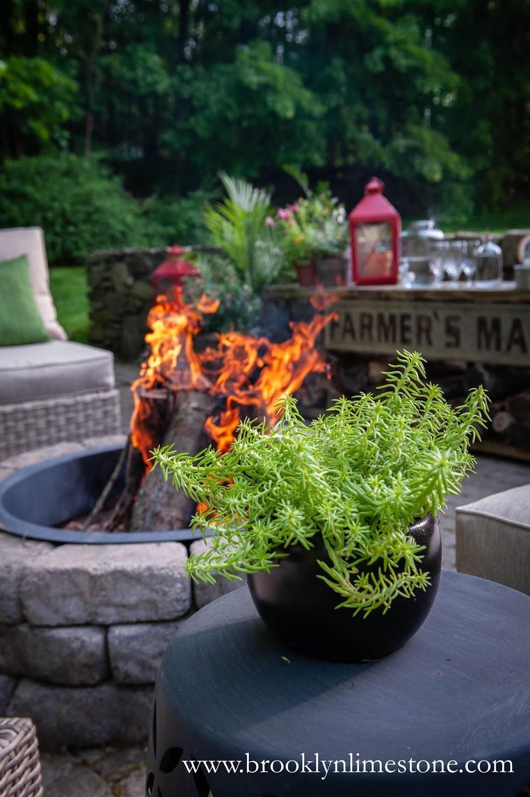 succulent firepit patio