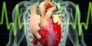 Pengobatan Tradisional Penyakit Jantung Bengkak