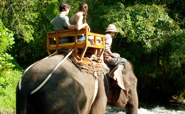 Long Trek Elephant Back Safari Ride Package - Singapadu, Sukawati, Gianyar, Bali, leisure, Attraction, Zoo, Adventure, Package