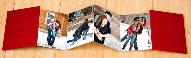 Senior Portraits, Senior Pictures, Senior Photos, Senior Portrait Photographer, Accordion Book, Ell Photography, Albuquerque, Sante Fe