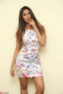 Nishi Ganda stunning cute in Flower Print short dress at Tick Tack Movie Press Meet March 2017 053.JPG