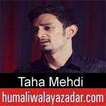 https://www.humaliwalyazadar.com/2018/10/taha-mehdi-nohay-2019.html