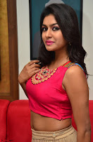 Akshita super cute Pink Choli at south indian thalis and filmy breakfast in Filmy Junction inaguration by Gopichand ~  Exclusive 085.JPG