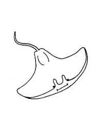 Stingray Coloring Page Images For Print