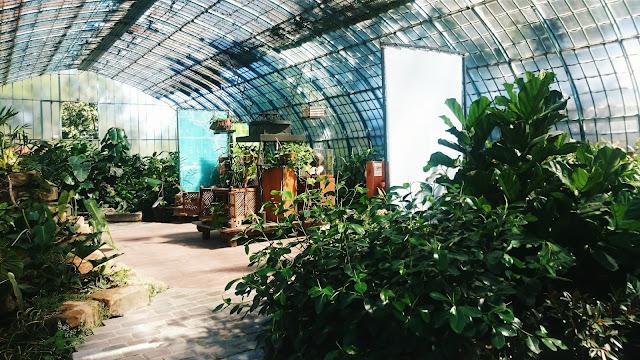 http://www.mynameisgeorges.fr/2016/08/dans-les-allees-du-jardin-des-serres.html