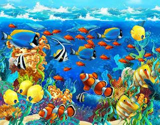 Морские животные для детей
