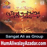 http://audionohay.blogspot.com/2014/10/sangat-ali-as-group-nohay-2015.html