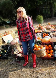 Pastorino's Pumpkin Farm