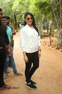 Regina Candra Pictures at Haritha Haram Event    ~ Bollywood and South Indian Cinema Actress Exclusive Picture Galleries