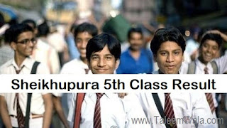 Sheikhupura 5th Class Result 2019 PEC Online - Sheikhupura Board Results - BISE