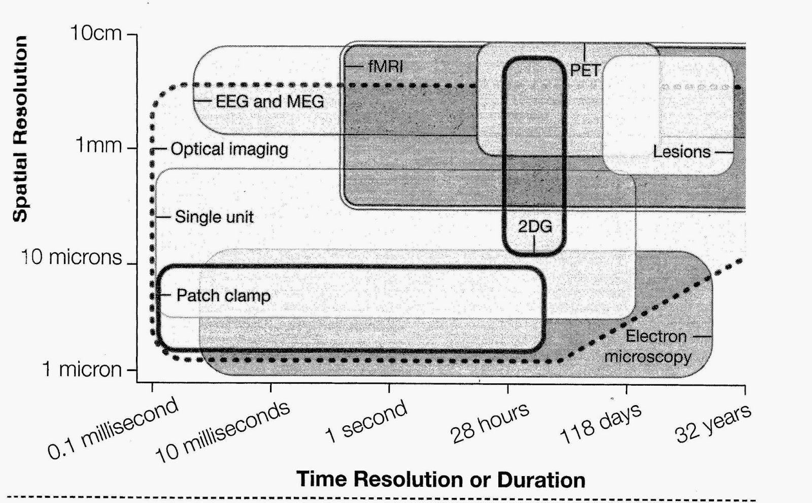 kurzweil wiring diagram wiring diagramskurzweil wiring diagram wiring diagram kurzweil wiring diagram