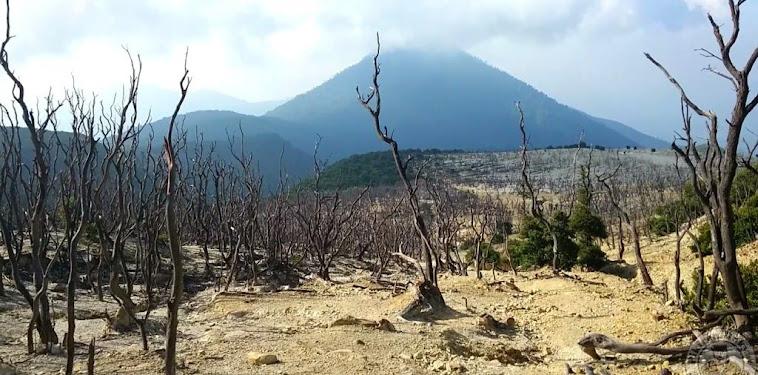 Info Status Buka Tutup Pendakian Gunung Papandayan