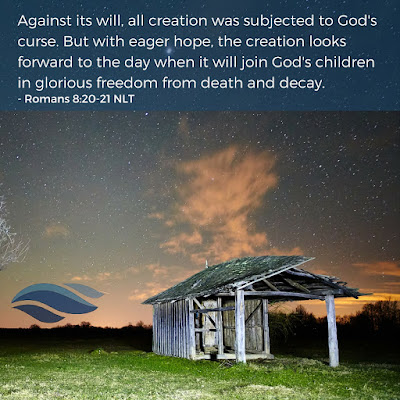 The creation looks forward to the day when it will join God's children in glorious freedom from death and decay.