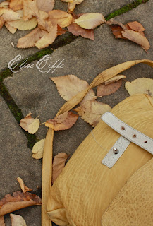 Elk Yellow Leather Satchel Bag & Fallen Autumn Leaves on sidewalk in Hahndorf, South Australia
