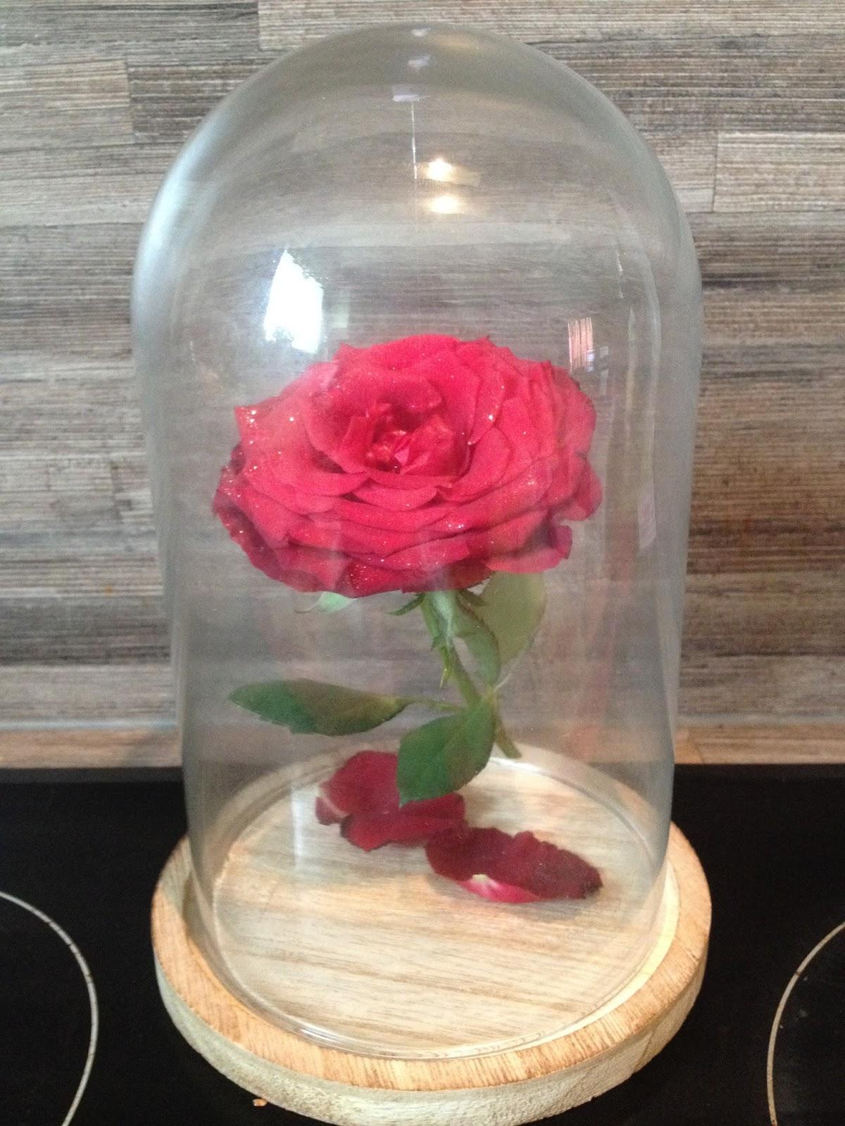 les diy de fishounette diy rose enchant e sous cloche de. Black Bedroom Furniture Sets. Home Design Ideas