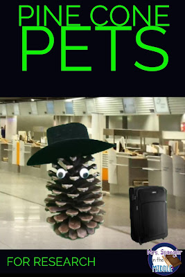 Pine Cone Pets - Research with a Twist!