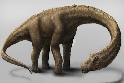 Scientists explain evolution of some of the largest dinosaurs