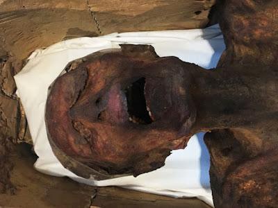 Η «μούμια που ουρλιάζει» εκτίθεται στο αρχαιολογικό Μουσείο Αιγύπτου