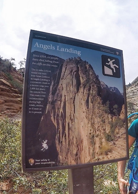 Scout Lookout signs