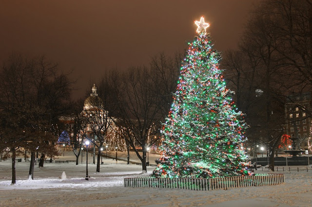 Boston Common no Natal em Boston