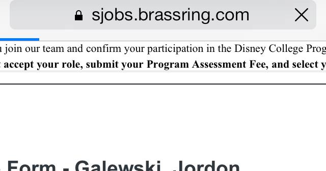 Saving Mouseketeers: My Disney College Program Application