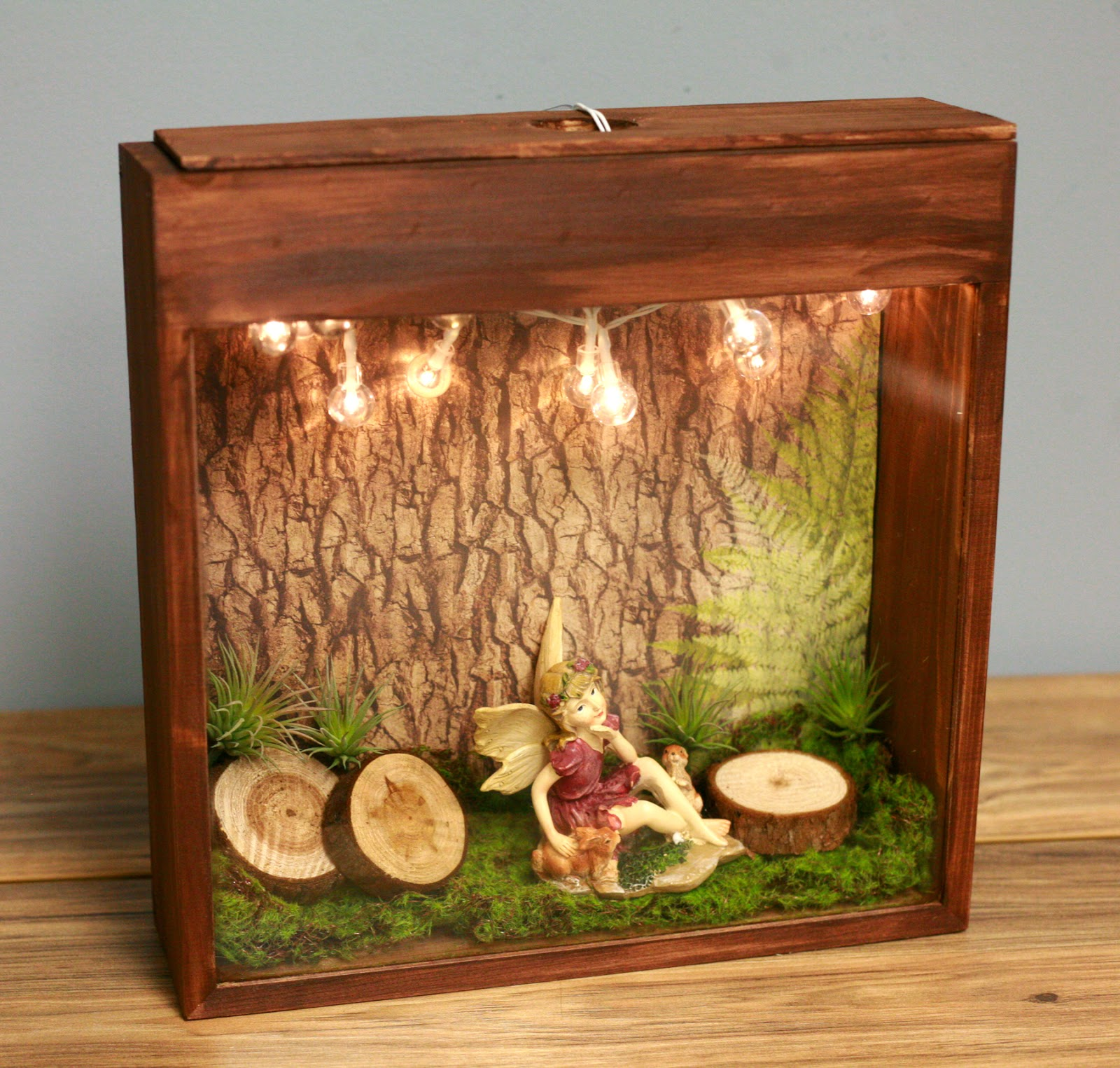 Ben franklin crafts and frame shop creative fairy garden for Fairy garden box ideas