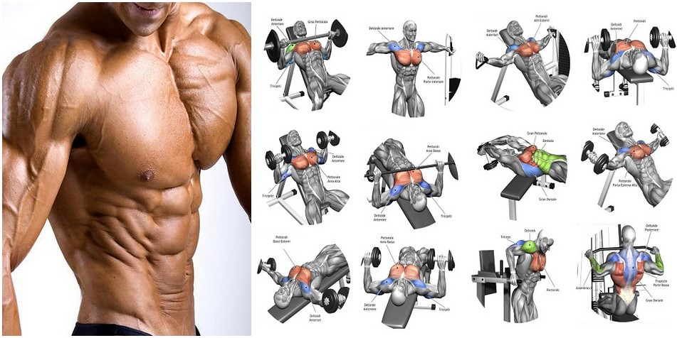 Best Chest Workout 40 Minutes Complete With 6 Exercises