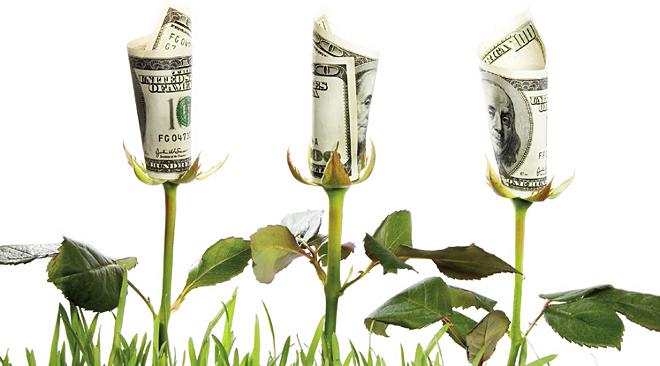 Crecimiento Global Verde, 'Economía verde', biodiversidad e ...