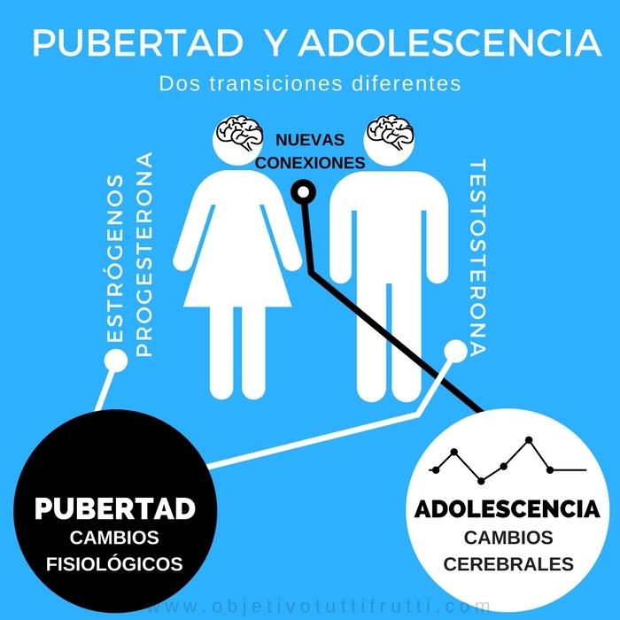 Cambios en la pubertad y en la adolescencia explicado de forma fácil
