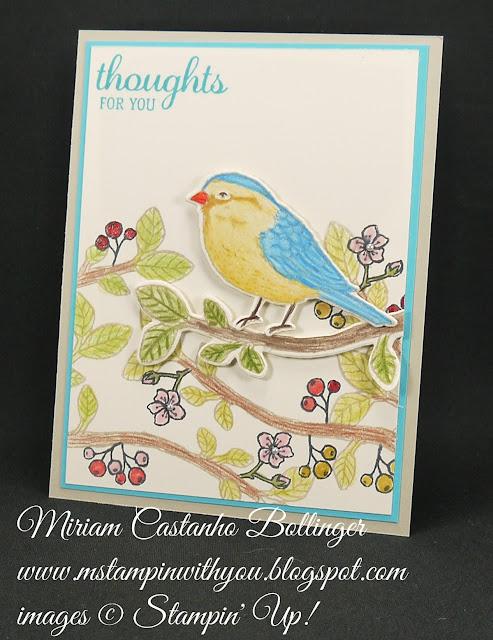 Miriam Castanho-Bollinger, #mstampinwithyou, stampin up, demonstrator, dsc, get well, best birds stamp set, birds & blooms thinlits, watercolor pencil, big shot, su